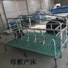 供应单体双体母猪产床整体设备制造商沐洋厂家