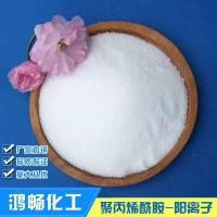 阴离子聚丙烯酰胺絮凝剂